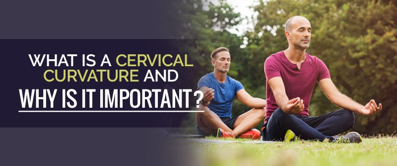 What is a Cervical Curvature and Why is it Important? Image