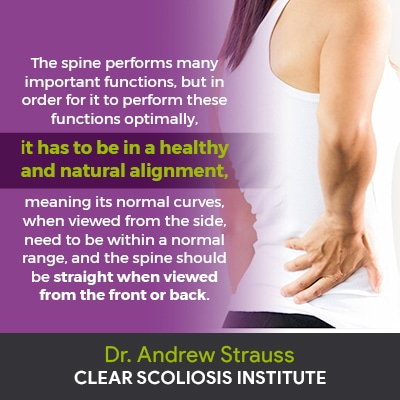 the spine performs many important functions...